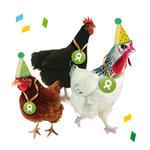 3 Hühner (Geburtstag)