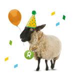 Schaf (Geburtstag)